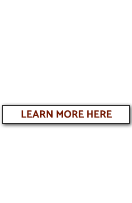 library passport services