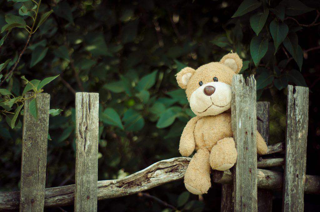 a teddy bear sits on a wooden fence in front of a leafy background